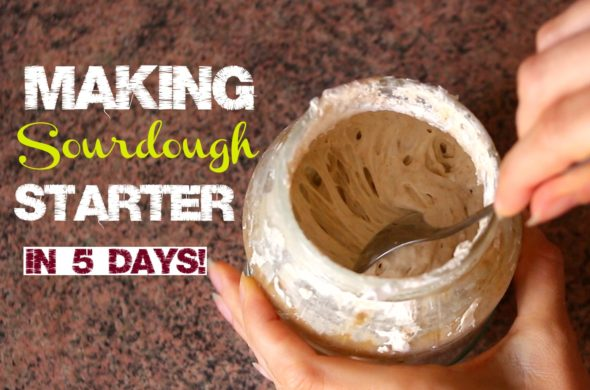 making-sourdough-starter-in-5-days
