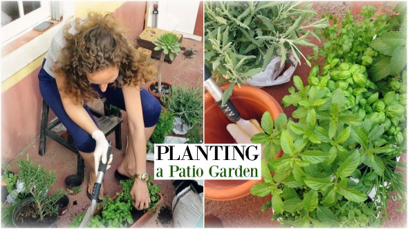 Plant a Patio Garden with Me - Starting from Herbs in Pots and Containers