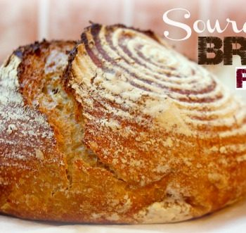 My Secret Sourdough Bread Recipe (Low FODMAP) - Baking Artisan Sourdough Bread At Home